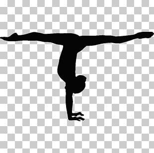 Gymnastics Handstand Balance Beam Split Sport PNG