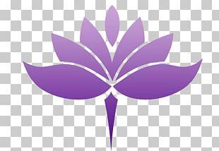 Nelumbo Nucifera Buddhist Symbolism Om Egyptian Lotus PNG