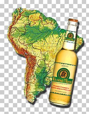 South America Mate Cocido Liqueur Yerba Mate PNG