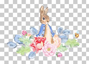 The Tale Of Peter Rabbit Watercolor Painting PNG