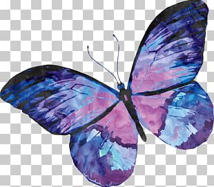 Papillon Dog Butterfly Watercolor Painting PNG