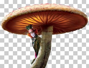 Alices Adventures In Wonderland The Mad Hatter Red Queen Alice In Wonderland PNG