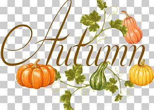 Calabaza Vegetable Pumpkin Autumn PNG