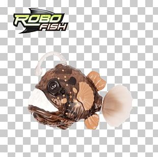 Deep Sea Fish Deep-sea Anglerfishes Deep Sea Creature PNG