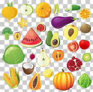 Fruit Vegetable Drawing Illustration PNG