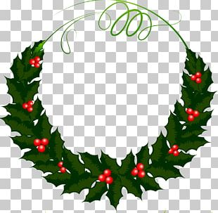 Holly Wreath Photography Leaf PNG