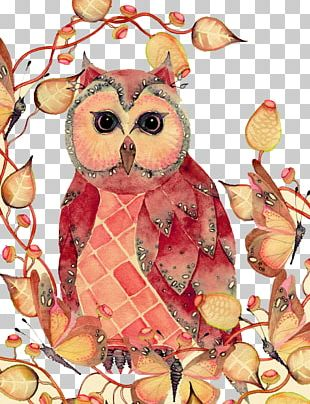 Owl Bird Watercolor Painting Drawing PNG