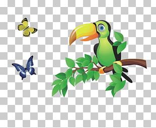 Bird In The Tree Animal PNG