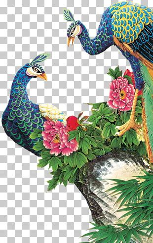 Peafowl Painting PNG