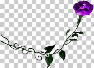 Floral Design Purple Flower Morning Glory Rose PNG
