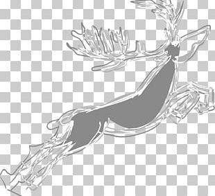 Reindeer Pxe8re Davids Deer PNG