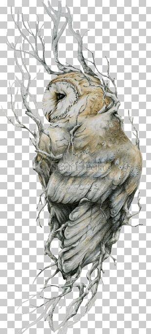 Barn Owl Tattoo Drawing Bird PNG