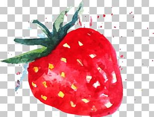 Strawberry Watercolor Painting Fruit PNG