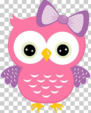 Owl Babies Baby Owls PNG