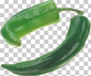 Jalapeño Chili Pepper Bell Pepper PNG