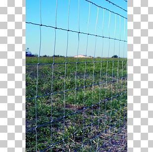 Fence Chain-link Fencing Wire Gauge Barbed Wire PNG