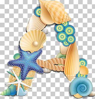 English Alphabet Letter Seashell PNG