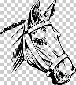 Horse Head Mask American Quarter Horse PNG
