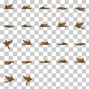 Bird Sprite Animation 3D Computer Graphics PNG