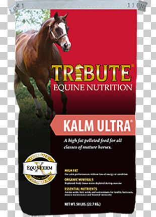 Horse Equine Nutrition Pelletizing Animal Feed Nutrient PNG