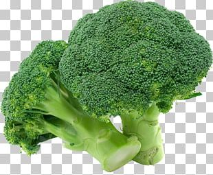 Broccoli Organic Food Vegetable PNG