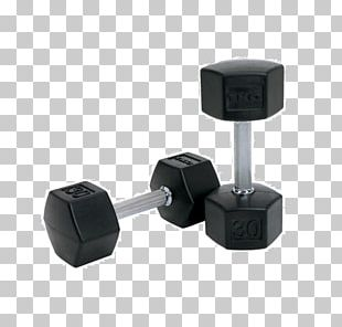 Dumbbell Exercise Equipment Weight Training Fitness Centre Physical Exercise PNG