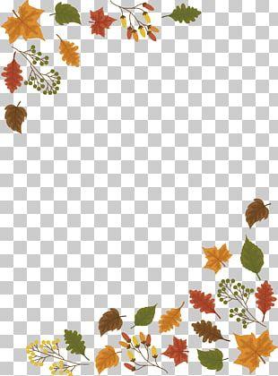 Leaf Autumn PNG