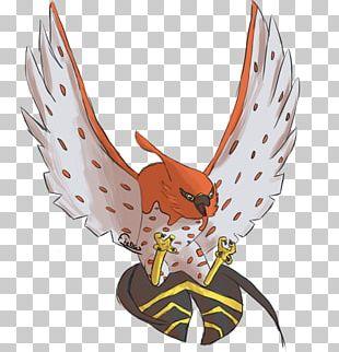 Bird Of Prey Beak Cartoon Chicken As Food PNG