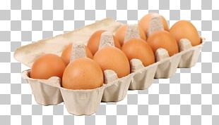 Egg Carton Paper Photography Box PNG