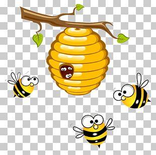 Honey Bee Beehive Bumblebee PNG