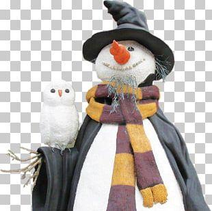 Snowman Owl Marketing Bird PNG