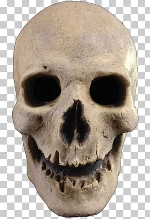 Mask Skull Halloween Costume Human Skeleton PNG