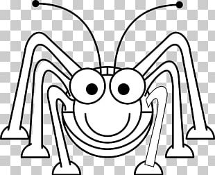 Coloring Book Beetle Ant Drawing PNG