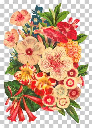 Flower Bouquet Floral Design Cut Flowers Botanical Illustration PNG