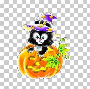 Cat Halloween Jack-o-lantern Festival Pumpkin PNG
