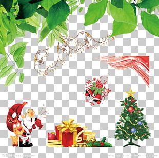 Christmas Tree Christmas Ornament Christmas Gift Leaf PNG