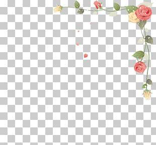 Flower Frames Paper PNG