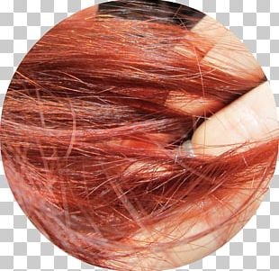 Hair Coloring Hair Coloring Chrome Orange Red PNG