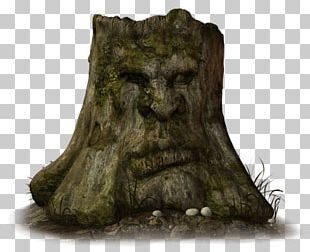 Drawing Tree Stump Skunk House PNG