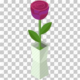 Beach Rose Scalable Graphics Icon PNG