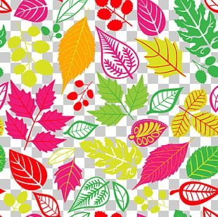Autumn Leaf Color Pattern PNG