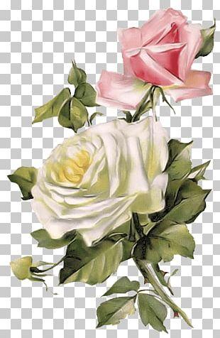 Rose Vintage Clothing Flower PNG