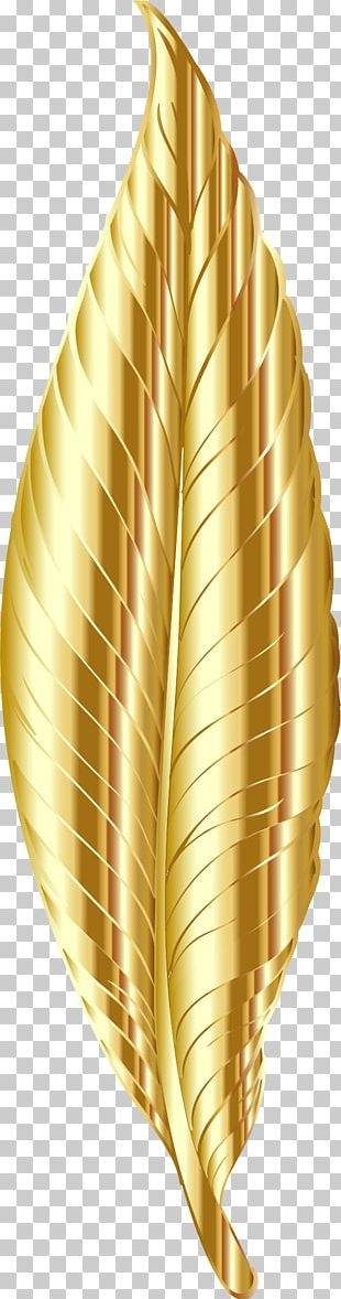 Gold Feather PNG