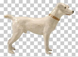 Dog Breed Sporting Group Retriever Companion Dog PNG