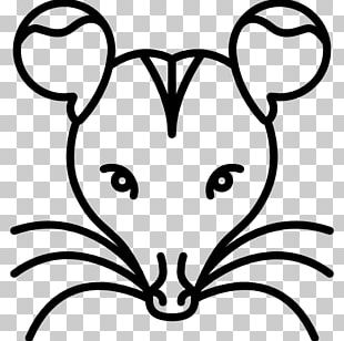 Rat Rodent Computer Mouse Computer Icons Animal PNG