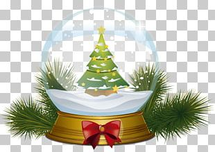 Christmas Tree Magic Crystal Ball PNG
