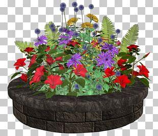 Floral Design Flowerpot Flowering Plant Annual Plant PNG