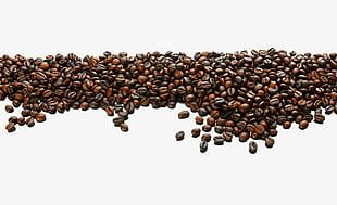 Coffee Beans Background PNG