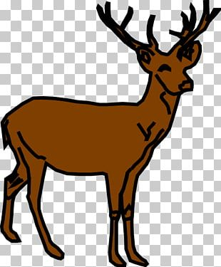 White-tailed Deer Moose Reindeer PNG