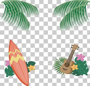 Hawaii Icon PNG